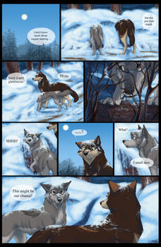 What's Your Damage | Page 46