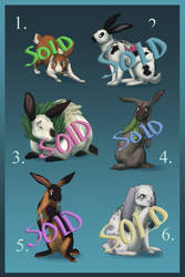 Bunny Fundraiser Adopts | CLOSED