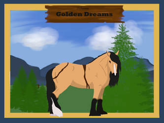 10 Golden Dreams