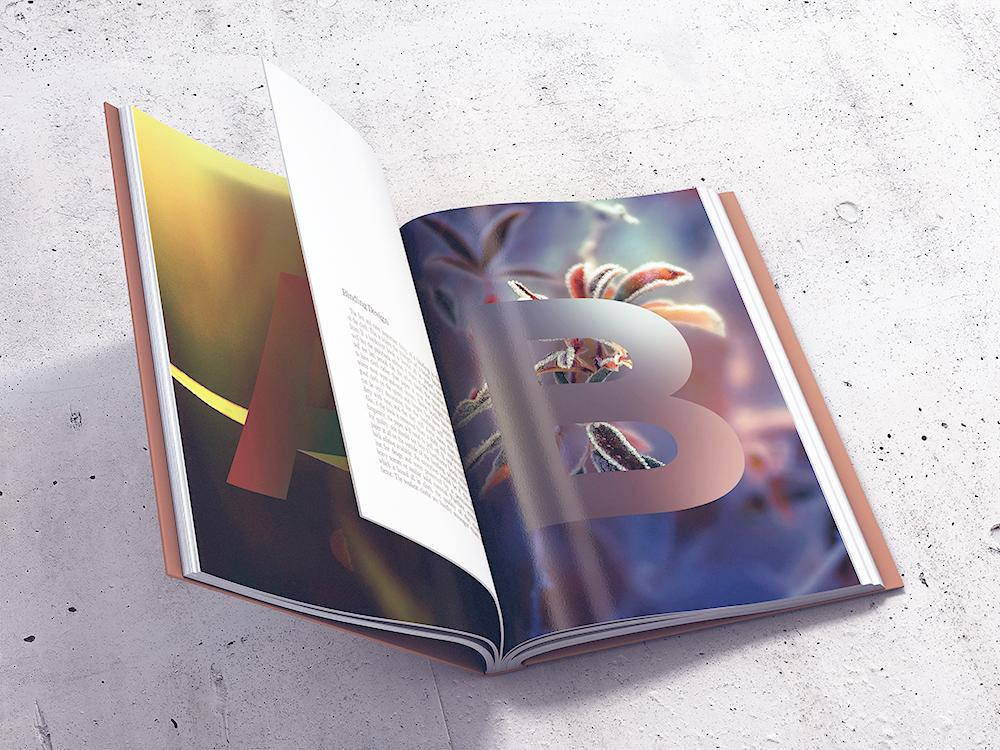 Book MockUp vol1 by coloformia