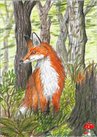 Fox (ACEO) by Woodswallow