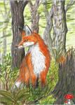 Fox (ACEO)