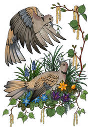 Heralds of spring by Woodswallow