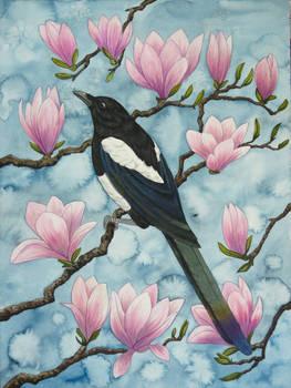 Magnolian Magpie