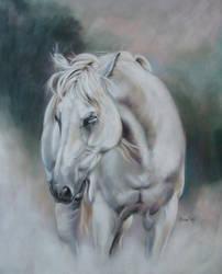 white dream by Eline-portraits