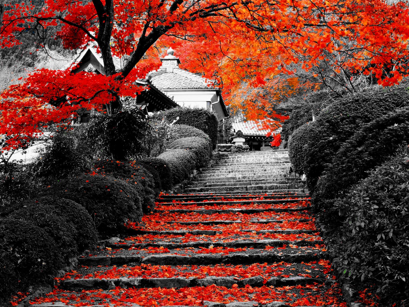 El Tiempo Juntos (Privado) Kyoto_stairs_by_vombomin-d324foz