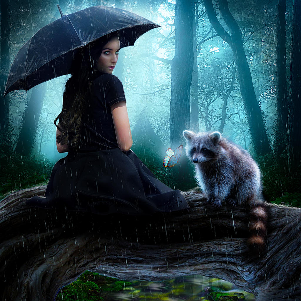 Once in the woods during a rain...