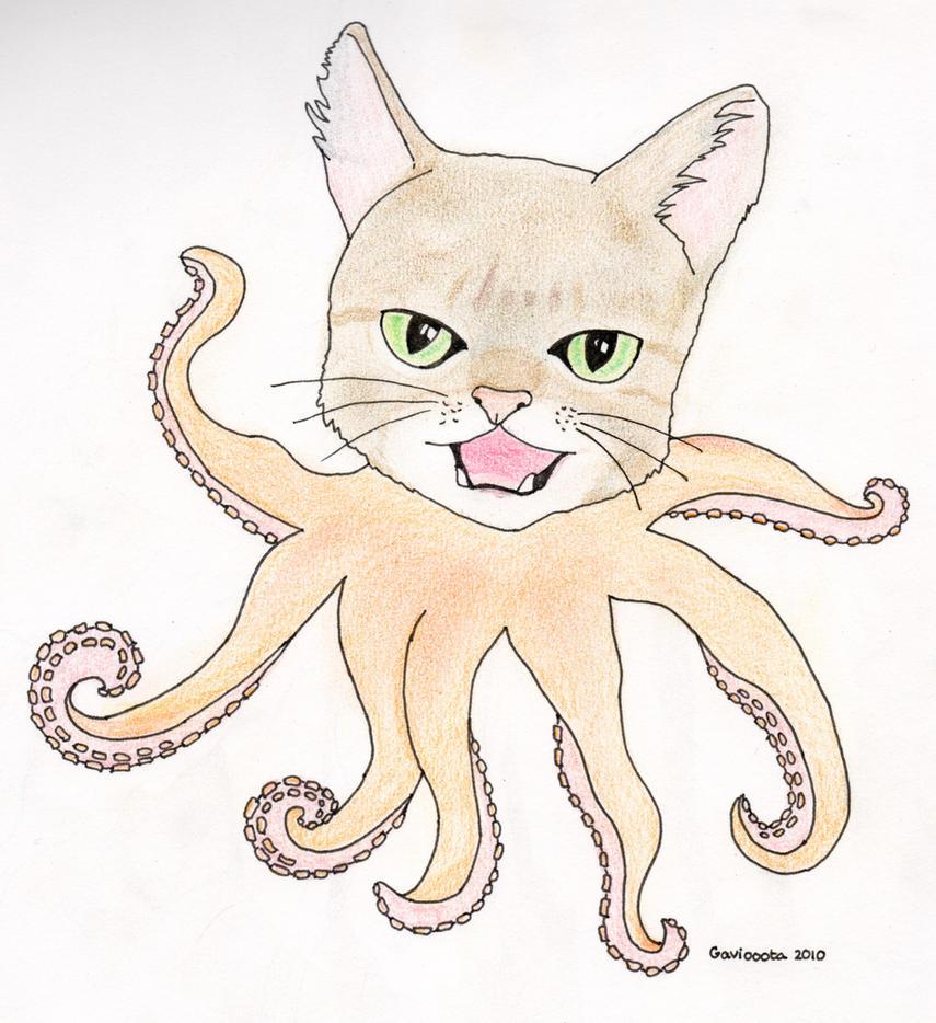octopuscat by gaviooota on deviantart