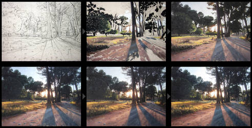 Forest sunset progression by Ben-Seffaj