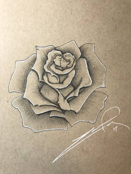 Couple's rose