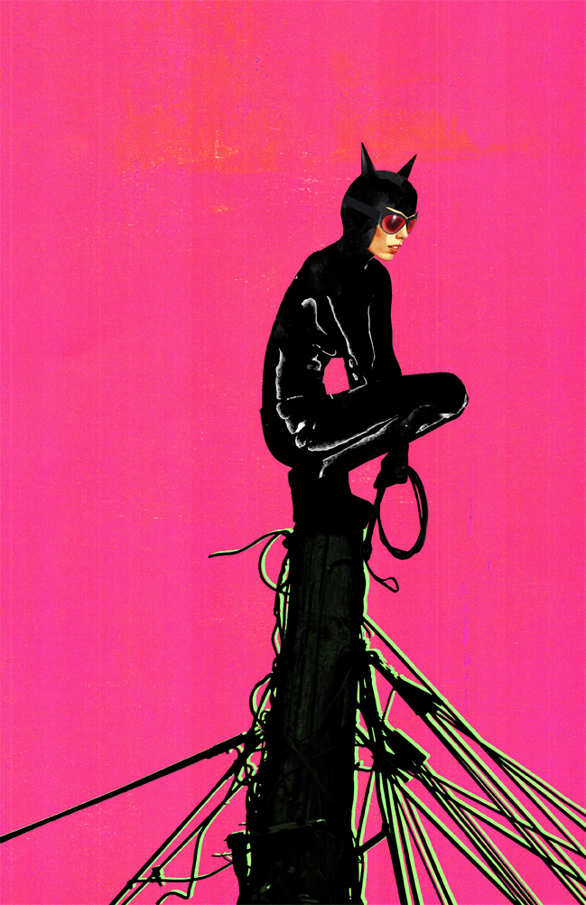 Catwoman Pink by skyscraper48
