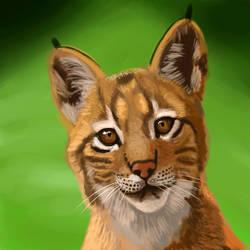 What's that? Baby Lynx Speedpaint
