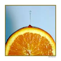 fruit - orange juice by macrophoto