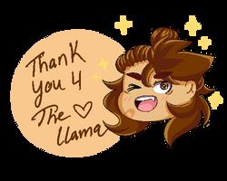 Llama Thank You  by KITTIESANDBEARS101