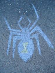 Spider by Tulsatrash