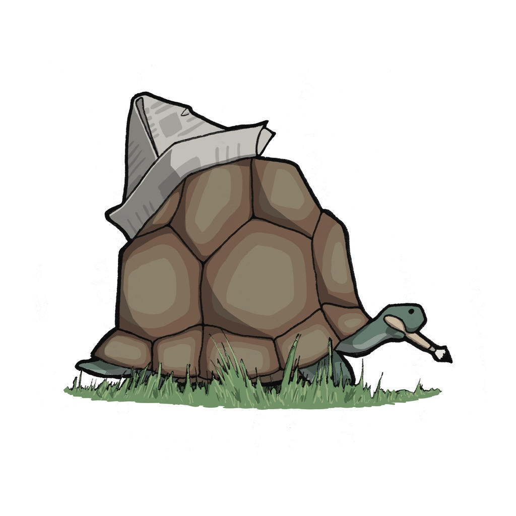 Tortoise by Zoph42