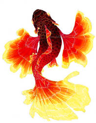 Flamenco Fish