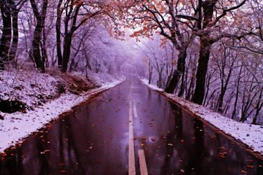 November through my eyes