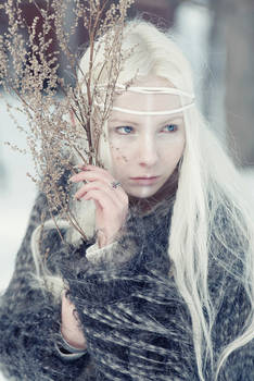 shaman I