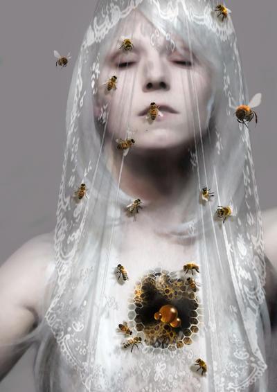 honeycomb by MarieSaalfrank