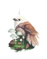 Origin by nybird