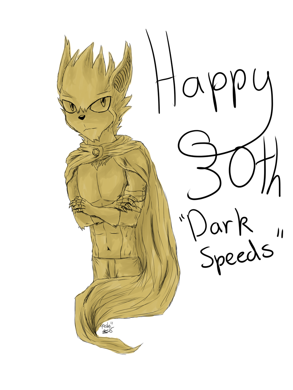 Ashworth- Darkspeeds Bday Gift by ashe-the-hedgehog