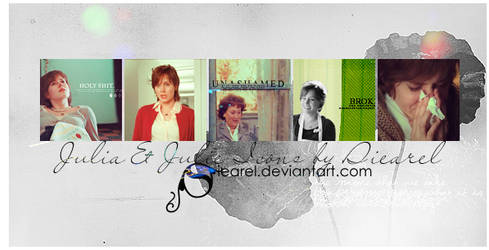 Julie and Julia Icons 5 pic