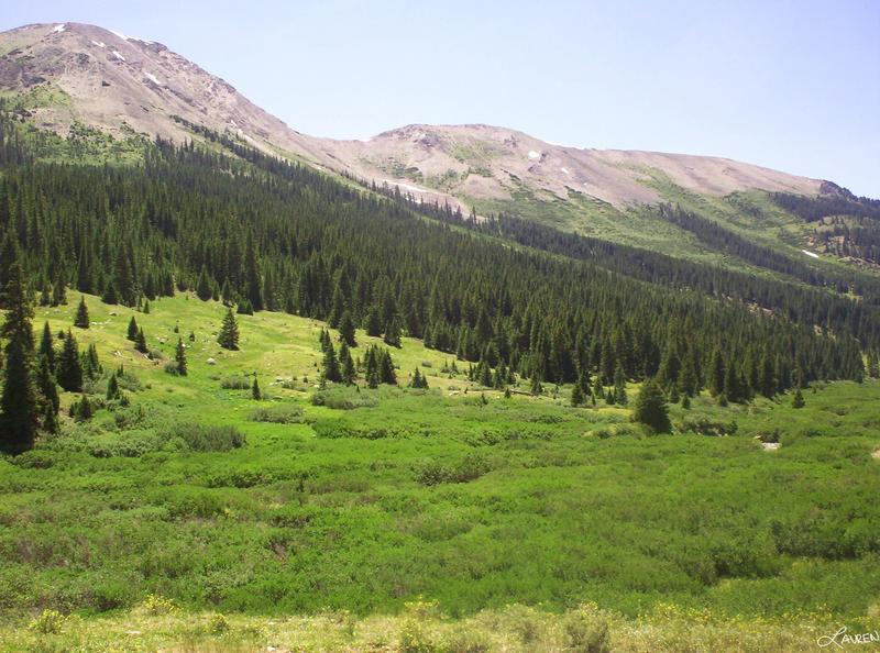 http://fc02.deviantart.com/fs18/i/2007/122/0/5/Colorado_Mountains_by_Silent_Lightning.jpg