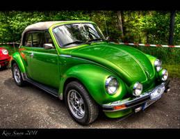 Frog or beetle?