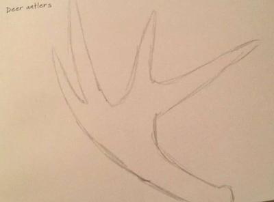 Daily Prompt #22 (Deer Antlers) by RainbowCloudArt
