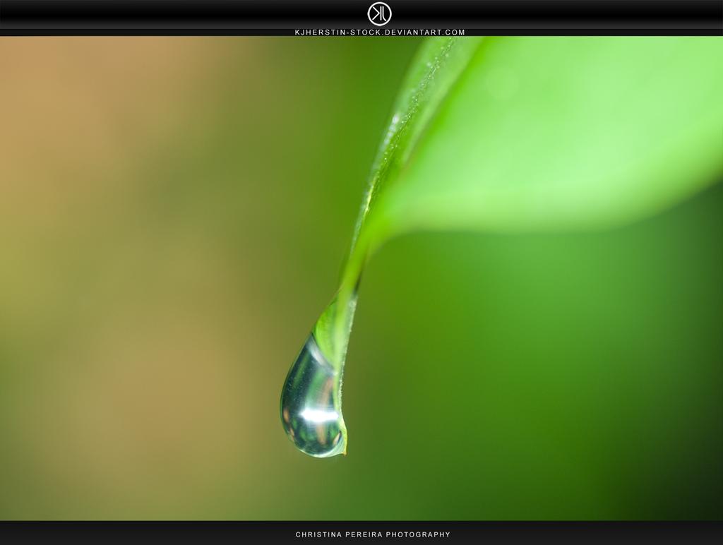 Droplet by stockkj