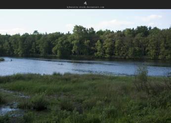 River by stockkj
