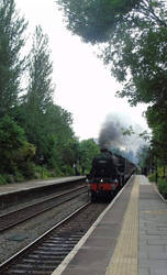 steam train going through BOA station  by kirk12Lumiere