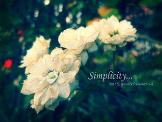 Simplicity by Nanilily