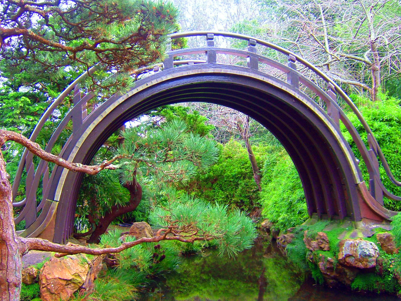 Japanese Tea Garden 1 by AluminumWings