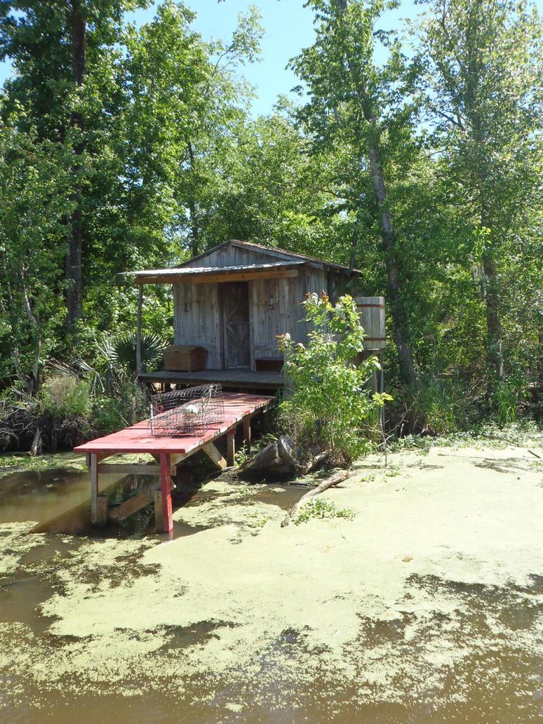 Swampland Tour Houma