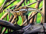 Micropachycephalosaurus Hongtuyanensis [Ref Draw] by TheKissingHand