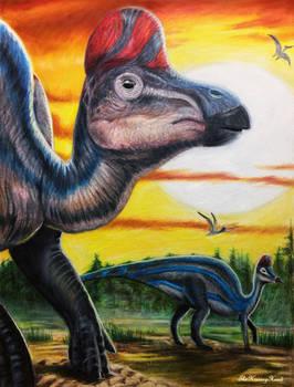 Corythosaurus Casuarius [Ref Drawing]