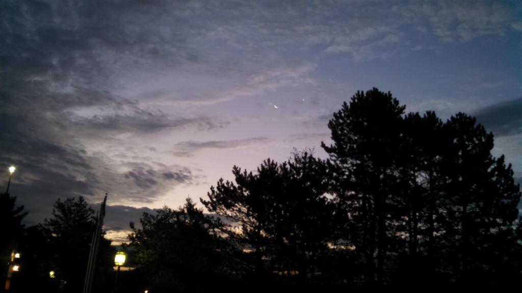 Night Sky by dumpsterfiregypsy