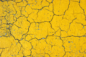 Cracks on Yellow Asphalt by GrungeTextures