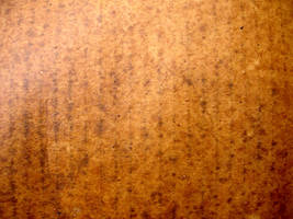 Wet Cardboard by GrungeTextures