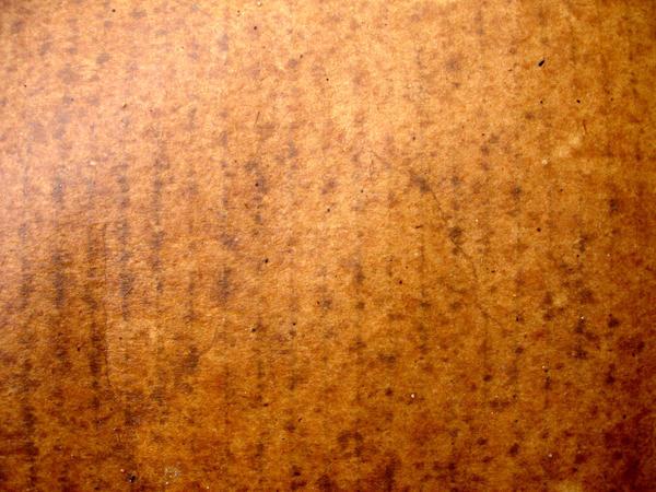 Wet Cardboard