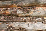 Wall of Old Barn