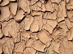 Cracked Red Clay