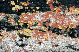 Peeling Paint on Concrete by GrungeTextures