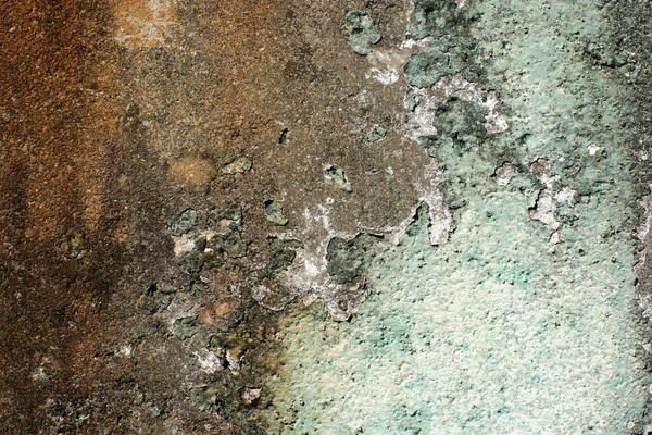 Peeling Paint on Dirty Wall