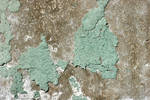 Peeling Paint Texture by GrungeTextures