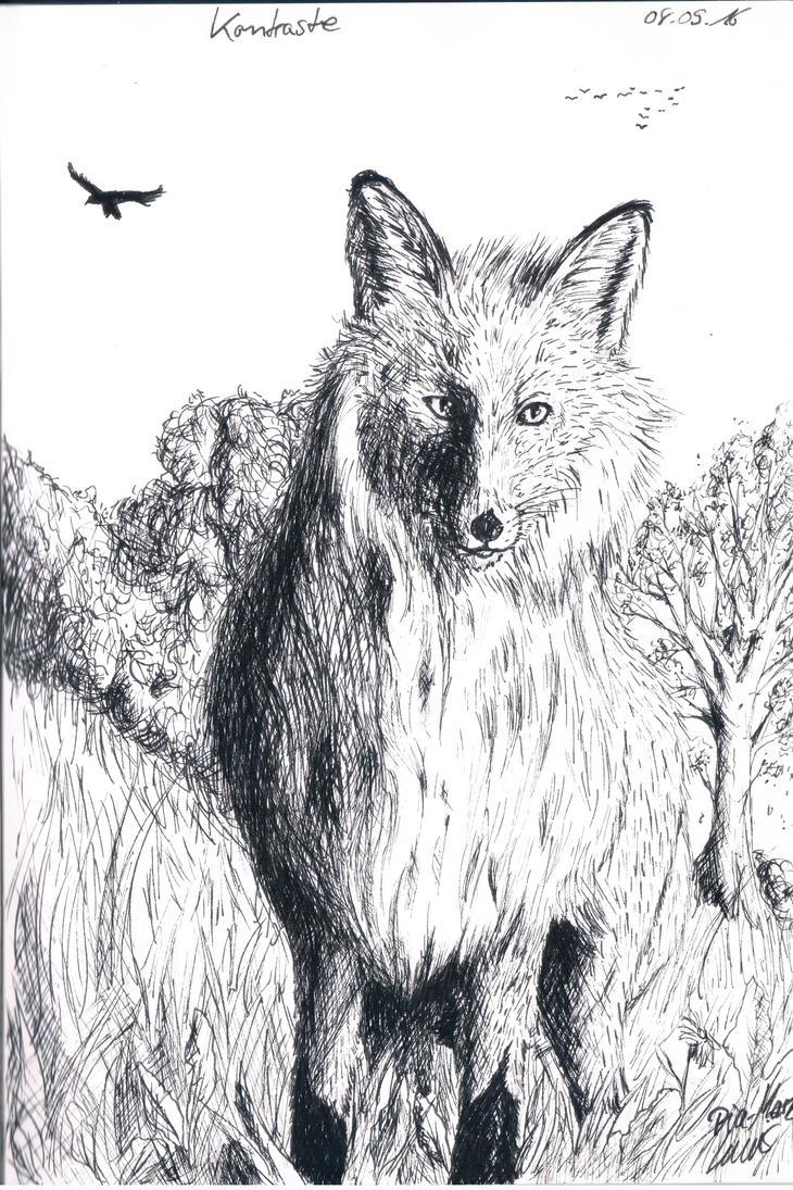 Fuchs Schraffur 08.09.2016 by Reptilcat