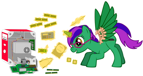 Sata Zip - Service Tech Pony