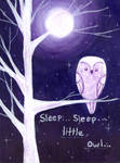 Sleep Little Owl